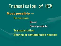 Hepatitis C Transmission