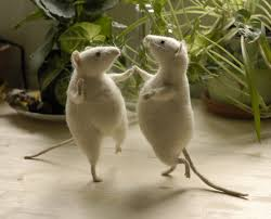 2 dancing mice ihelpc